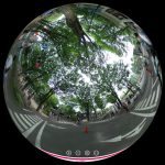 杉並児童交通公園で自転車練習!360度写真レポート&バーチャル体験