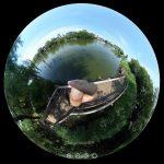 石神井公園で自然に触れる遊びを!360度写真付きで紹介
