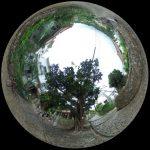 雨の金城町石畳道を行く。首里のもう一つの観光スポットを360度写真レポート
