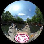 和田堀公園の釣り堀「武蔵野園」を360度写真付きでレポート。週末にのんびり釣りと散歩を楽しもう!