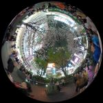 渋谷イチの待ち合わせスポット「ハチ公前」を360度写真レポート&バーチャル体験