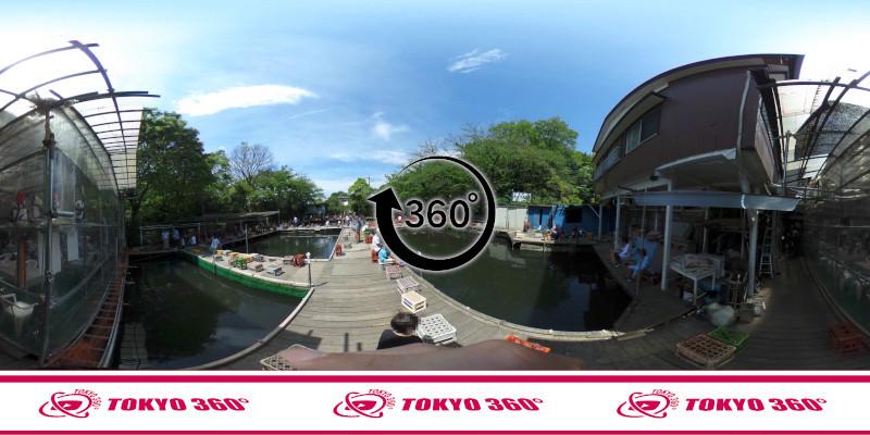 和田堀公園(武蔵野園)_360度写真05