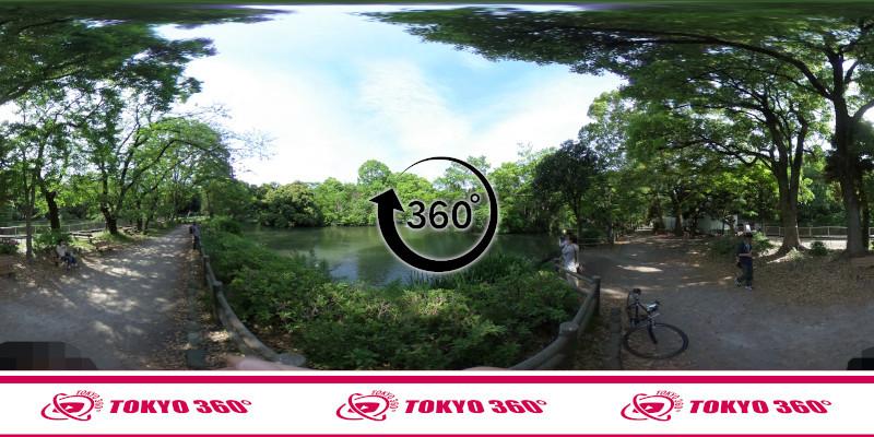 和田堀公園(武蔵野園)_360度写真09