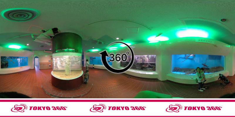 犬吠埼マリンパーク-360度写真03