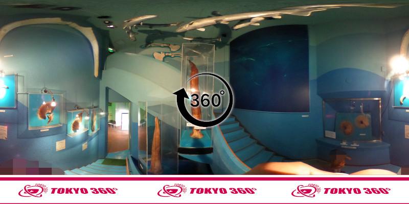 犬吠埼マリンパーク-360度写真05