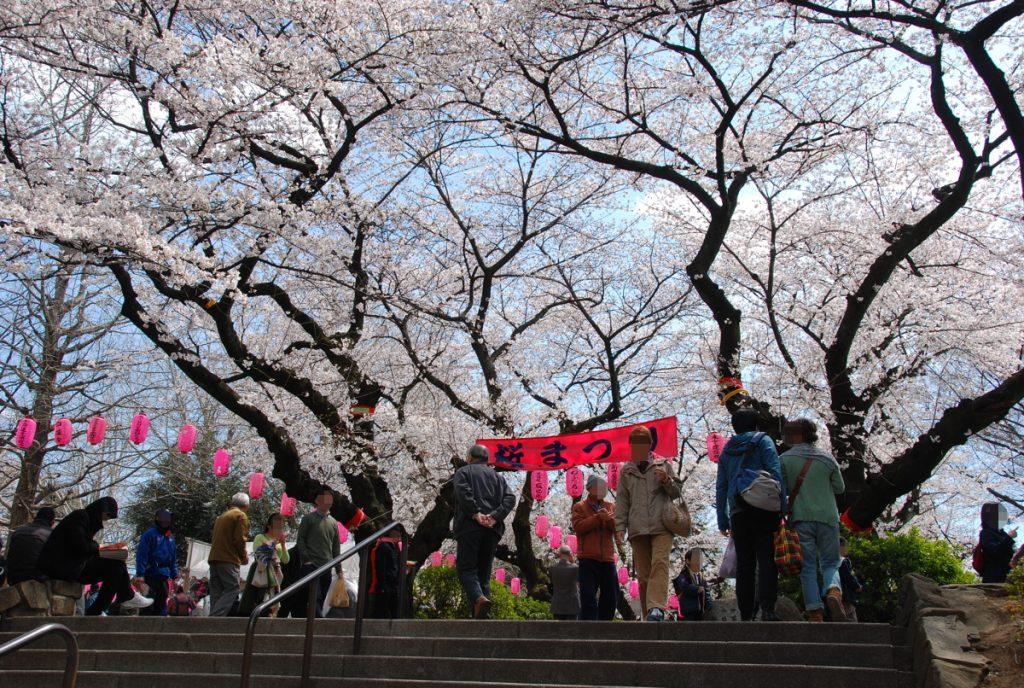 中野通り桜まつり入口