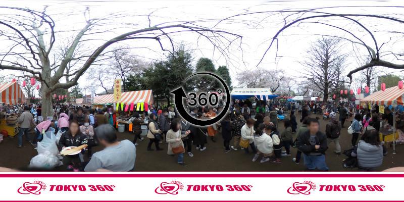 中野桜まつり-360度写真04