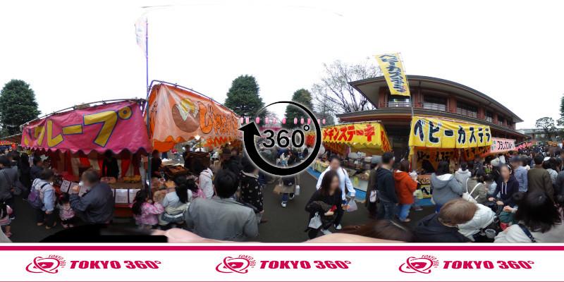 中野桜まつり-360度写真06