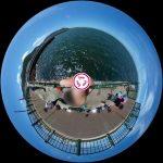 葉山港(あぶずり港)で小鯖を爆釣り!初心者家族の360度写真レポート。