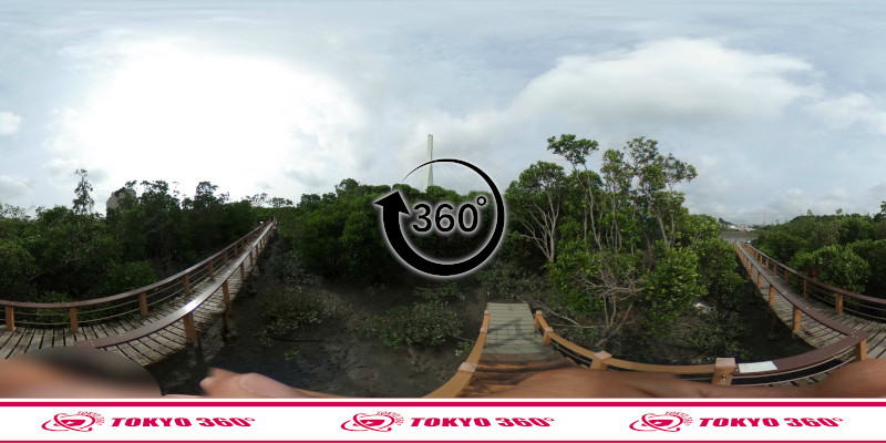 漫湖水鳥湿地センター-360度写真-05