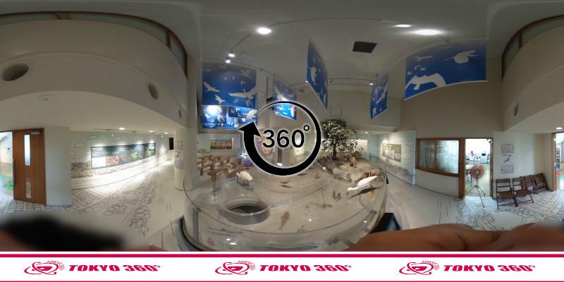 漫湖水鳥湿地センター-360度写真-11