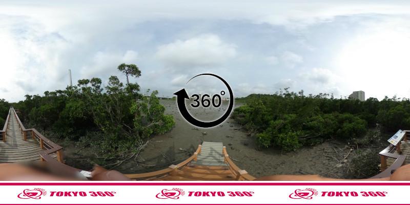 漫湖水鳥湿地センター-360度写真-15
