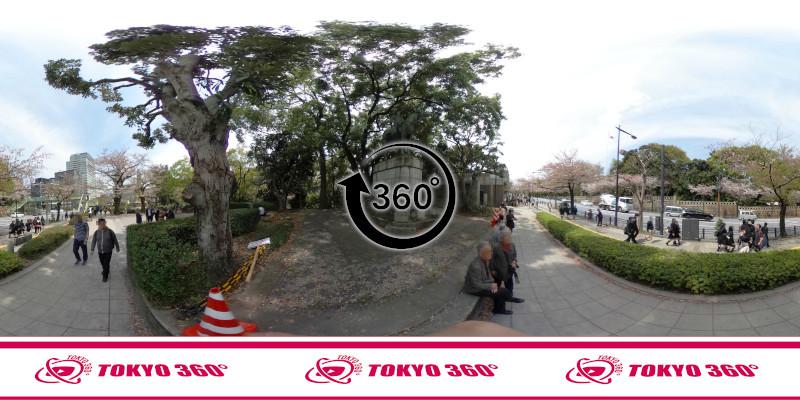 千鳥ヶ淵の桜-360度写真-09