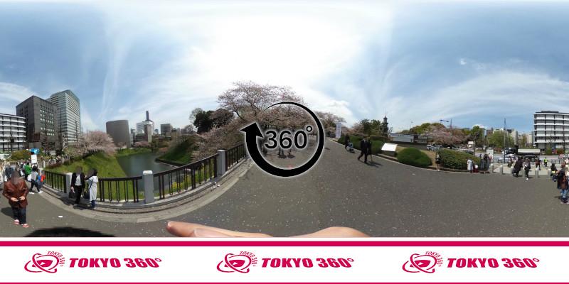 千鳥ヶ淵の桜-360度写真-12
