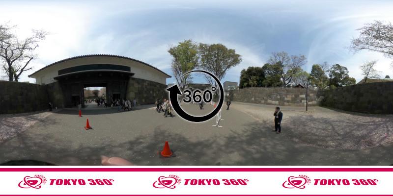 千鳥ヶ淵の桜-360度写真-14