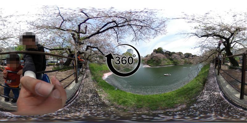 千鳥ヶ淵の桜-360度写真-16