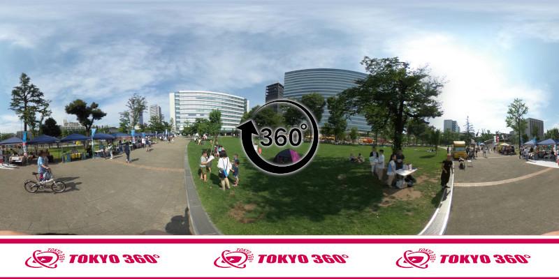 中野通りの桜並木-360度写真-18