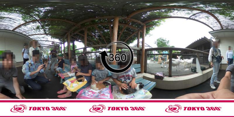 あらかわ遊園-360度写真-12