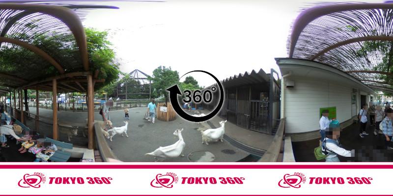 あらかわ遊園-360度写真-13