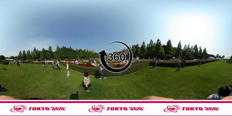 新宿御苑-360度写真-04