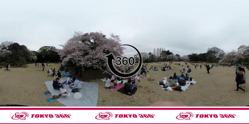 新宿御苑-360度写真-07