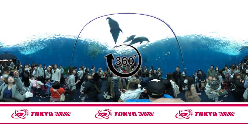 八景島シーパラダイス-360度写真-05