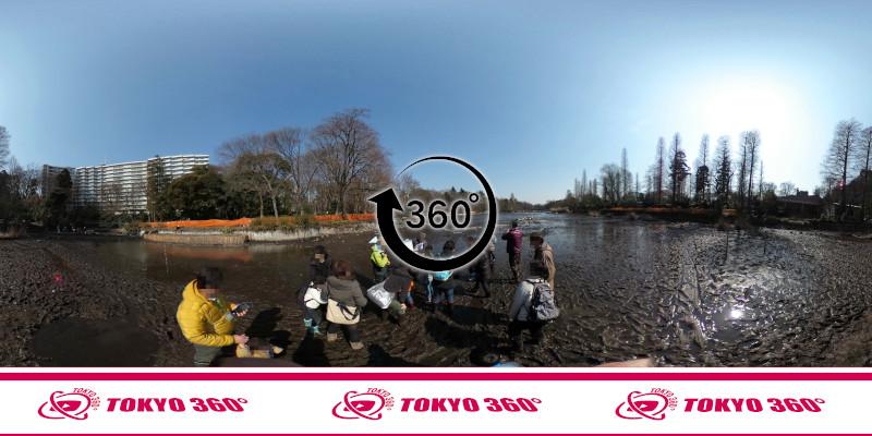 井の頭池かいぼり-360度写真-05