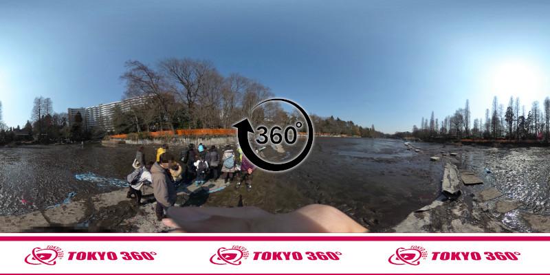井の頭池かいぼり-360度写真-06