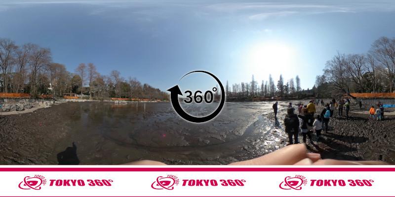 井の頭池かいぼり-360度写真-07