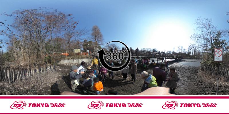 井の頭池かいぼり-360度写真-09