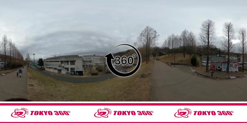 トーベ・ヤンソンあけぼの子どもの森公園-360度写真-24