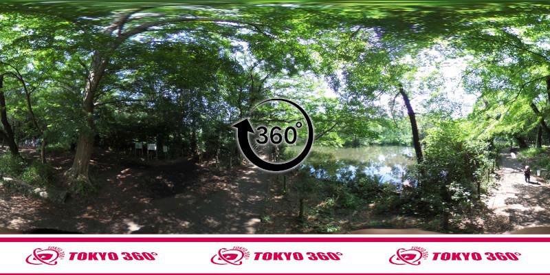石神井公園-360度写真-04