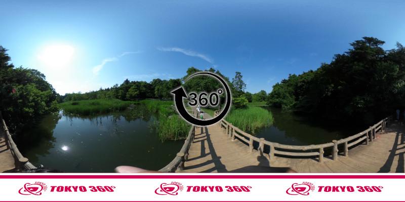 石神井公園-360度写真-05