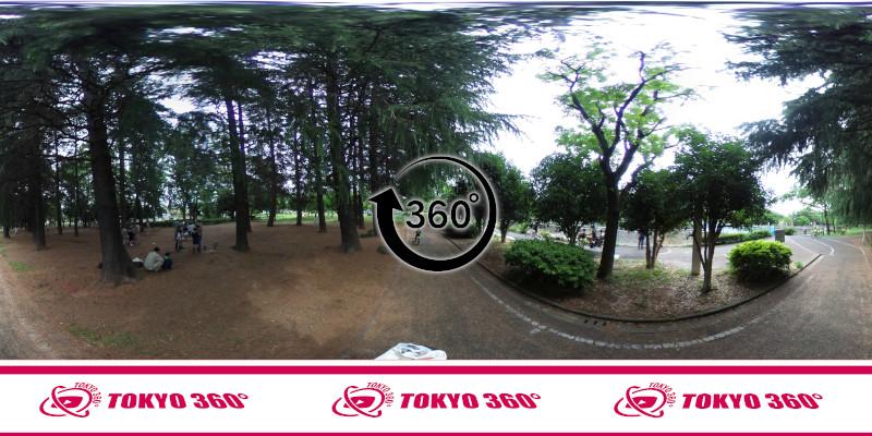 杉並児童交通公園-360度写真-04