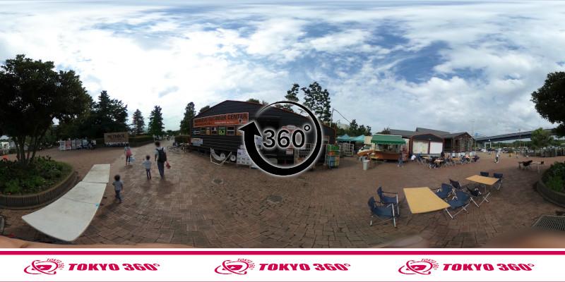 若洲海浜公園-釣り-360度写真-14