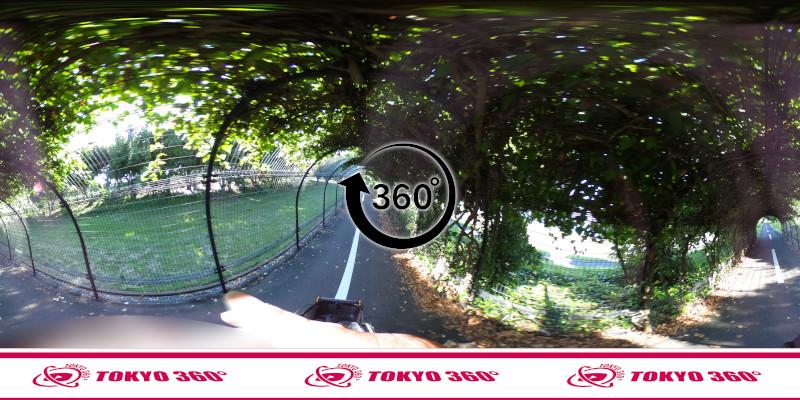 若洲海浜公園サイクリングロード-360度写真-15