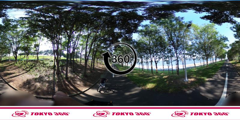 若洲海浜公園サイクリングロード-360度写真-18