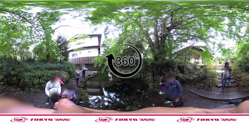忍野八海-出口池-360度写真