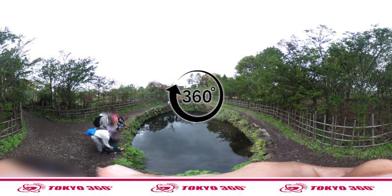忍野八海-銚子池-360度写真