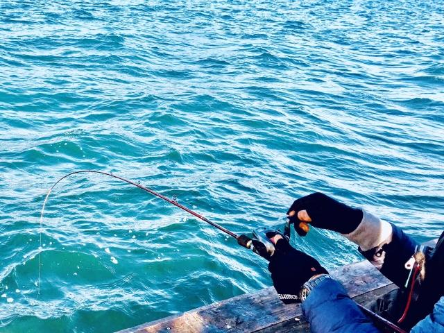 港で釣りをしているイメージ写真