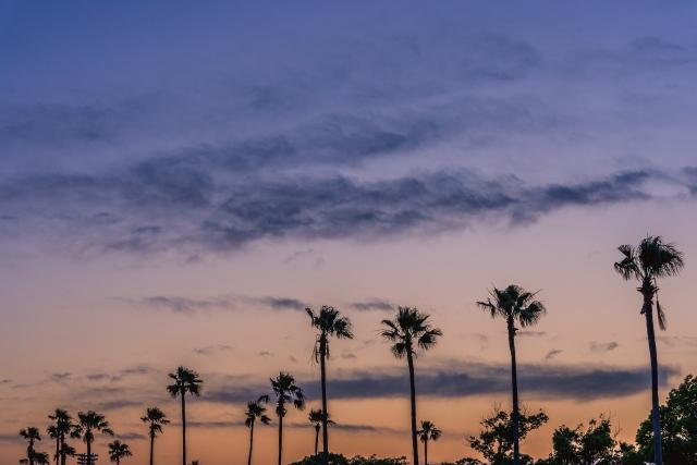 六甲アイランドマリンパークの夕景