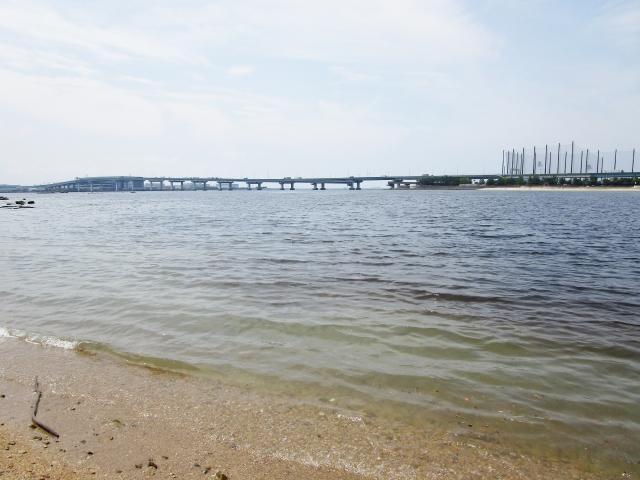 甲子園浜の海