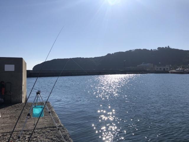 洲本港での釣り