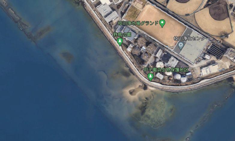 浜甲子園鳥獣保護区