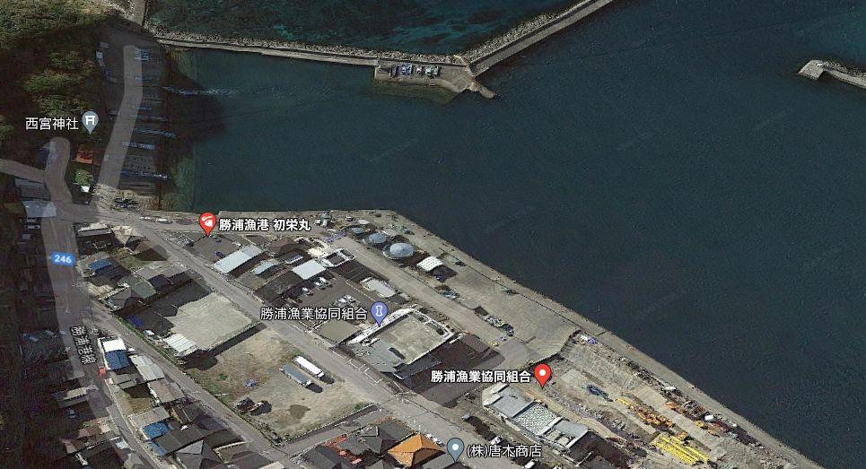 勝浦漁港-港内の南側にある護岸