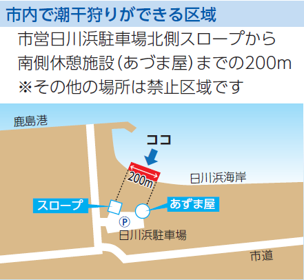 日川浜-潮干狩りエリア