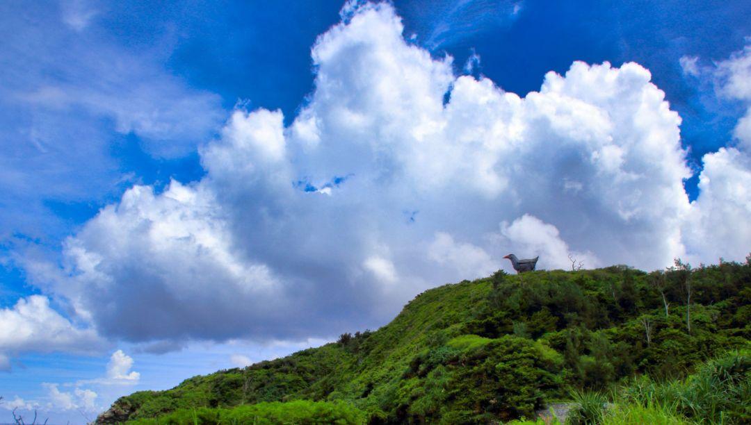 やんばるの森に立つヤンバルクイナ展望台