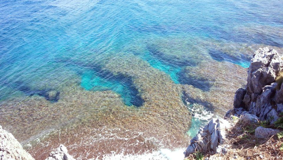 辺戸岬から見下ろすサンゴ礁