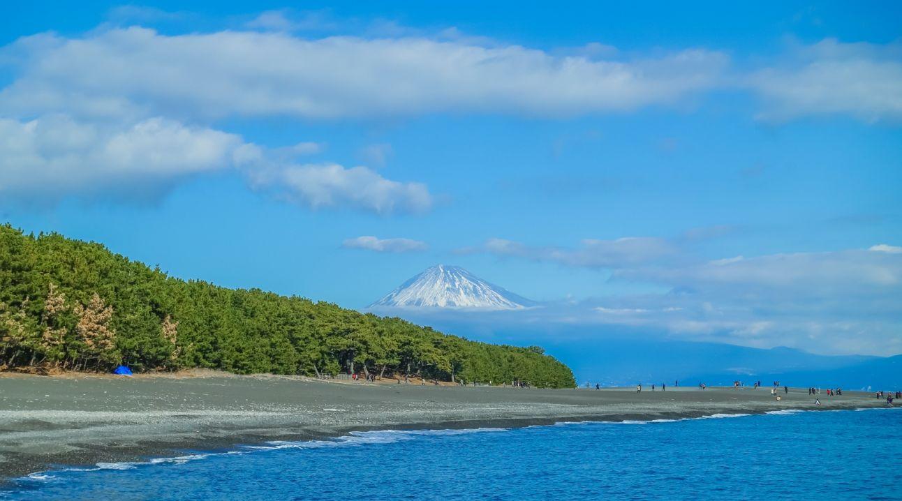 三保半島の海岸